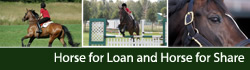 Horse to Loan